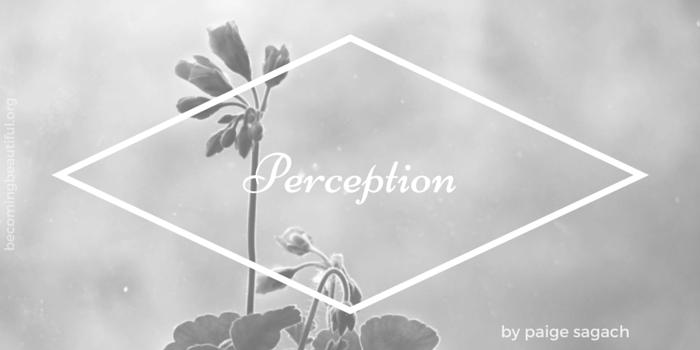 Perception - Paige Sagach - Becoming Beautiful
